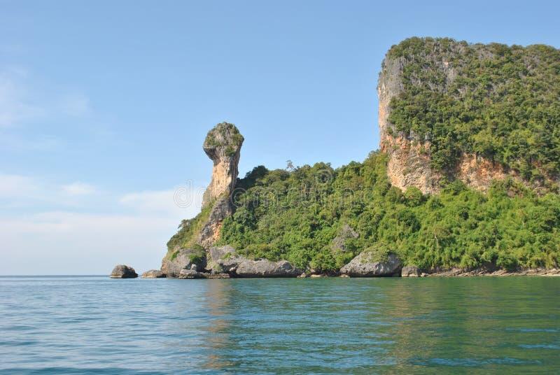 Îles de la Thaïlande - jungle6 photos libres de droits