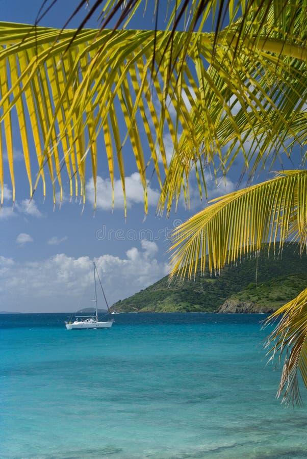 Îles de palmier de navigation images libres de droits