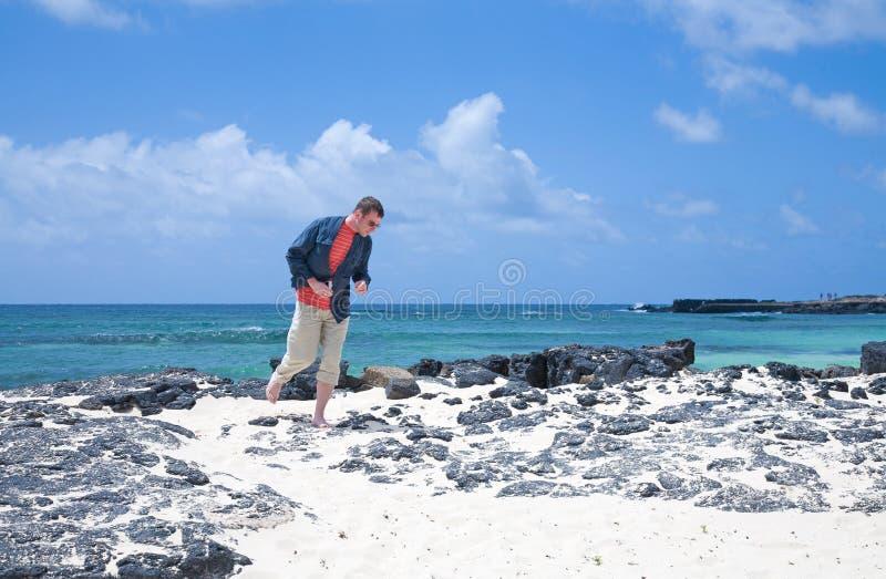 îles jaunes canari de fuerteventura photographie stock libre de droits