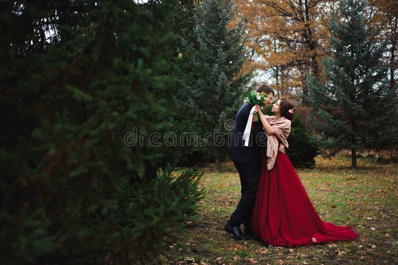 Ρομαντικός αγκαλιάστε των newlyweds περίπατοι πάρκων ζευγών στοκ φωτογραφία με δικαίωμα ελεύθερης χρήσης