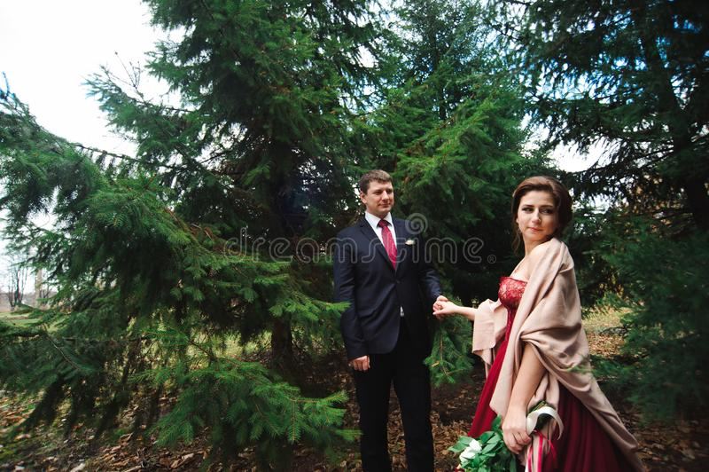 Ρομαντικός αγκαλιάστε των newlyweds περίπατοι πάρκων ζευγών στοκ εικόνα με δικαίωμα ελεύθερης χρήσης