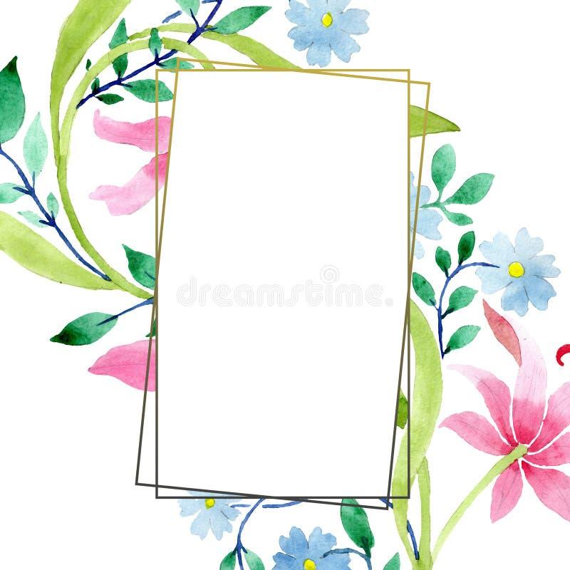 Ρόδινα και μπλε floral βοτανικά λουλούδια διακοσμήσεων Σύνολο απεικόνισης υποβάθρου Watercolor Τετράγωνο διακοσμήσεων συνόρων πλα απεικόνιση αποθεμάτων