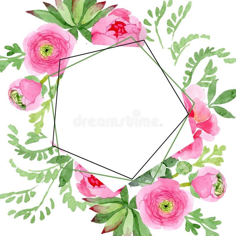 Ρόδινα floral βοτανικά λουλούδια βατραχίων Σύνολο απεικόνισης υποβάθρου Watercolor Τετράγωνο διακοσμήσεων συνόρων πλαισίων διανυσματική απεικόνιση