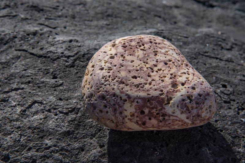 Ρόδινος βράχος λάβας με τις τρύπες στοκ φωτογραφία με δικαίωμα ελεύθερης χρήσης