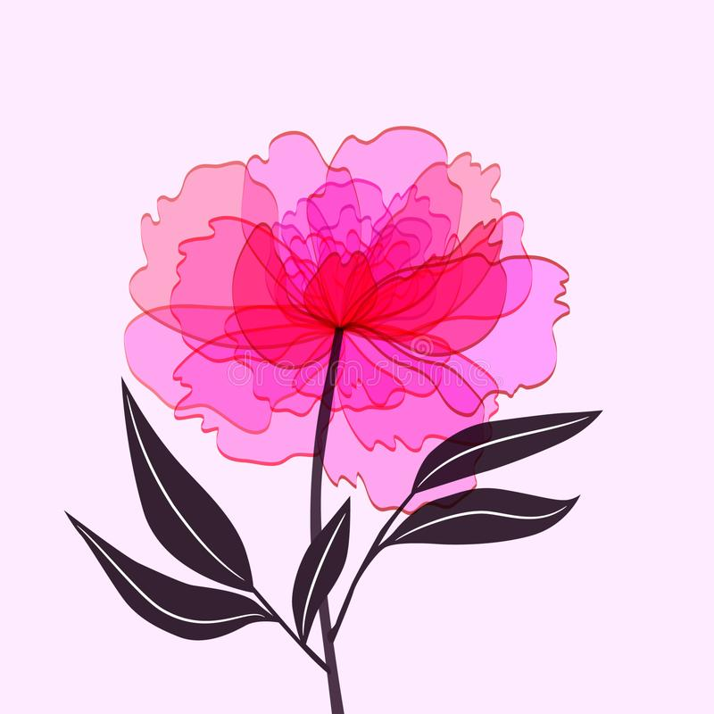 Ρόδινο peony λουλούδι που απομονώνεται στο ελαφρύ υπόβαθρο διανυσματική απεικόνιση