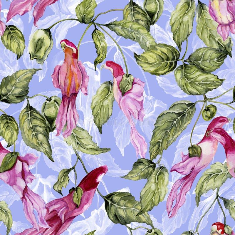 Όμορφα λουλούδια παπαγάλων στην αναρρίχηση των κλαδίσκων στο ιώδες υπόβαθρο floral πρότυπο άνευ ραφής υψηλό watercolor ποιοτικής  απεικόνιση αποθεμάτων