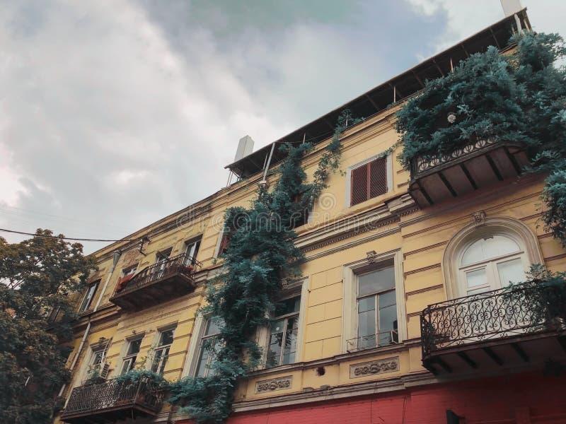 Όμορφα παλαιά φυλλώδη μπαλκόνια σπιτιών μερικώς στη στενή οδό της παλαιάς πόλης του Tbilisi, Γεωργία στοκ φωτογραφία με δικαίωμα ελεύθερης χρήσης