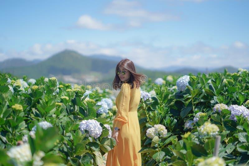 Όμορφη ασιατική γυναίκα στον κίτρινο περίπατο φορεμάτων στον κήπο λουλουδιών Hydrangea στοκ εικόνα
