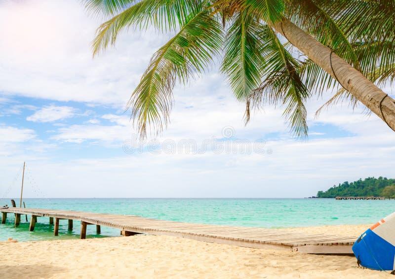 Όμορφη παραλία παραδείσου άποψης τροπική του θερέτρου Δέντρο καρύδων, ξύλινη γέφυρα, και καγιάκ στο θέρετρο την ηλιόλουστη ημέρα  στοκ φωτογραφίες