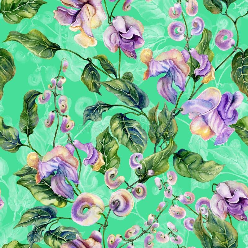 Όμορφοι κλαδίσκοι αμπέλων σαλιγκαριών με τα πορφυρά λουλούδια στο πράσινο υπόβαθρο floral πρότυπο άνευ ραφής υψηλό watercolor ποι ελεύθερη απεικόνιση δικαιώματος