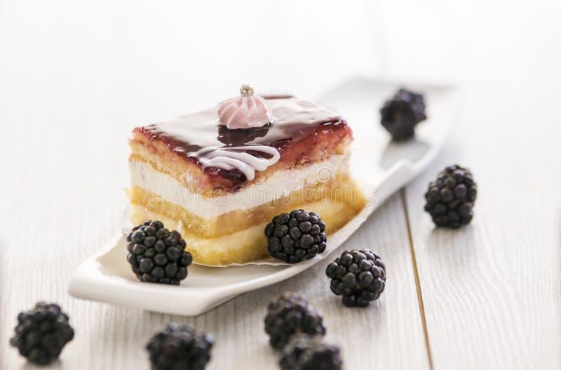 Όμορφο κέικ βατόμουρων στοκ φωτογραφίες
