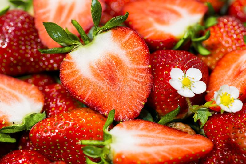 Ώριμες φράουλες - που κόβονται και ολόκληρες στοκ φωτογραφίες