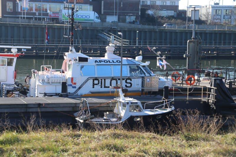 Σκάφη Loodswezen, η ολλανδική οργάνωση για τους πιλότους για να καθοδηγήσουν τα σκάφη στο λιμάνι IJmuiden στοκ εικόνα