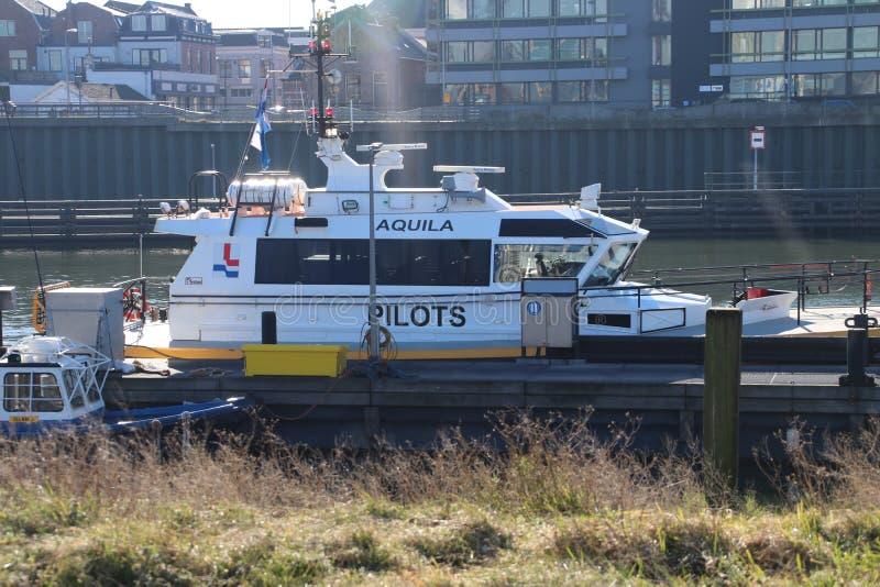 Σκάφη Loodswezen, η ολλανδική οργάνωση για τους πιλότους για να καθοδηγήσουν τα σκάφη στο λιμάνι IJmuiden στοκ εικόνες