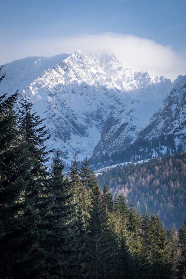 Σύννεφα γύρω από το χιονισμένο βουνό Grimming την ηλιόλουστη χειμερινή ημέρα στοκ φωτογραφία με δικαίωμα ελεύθερης χρήσης