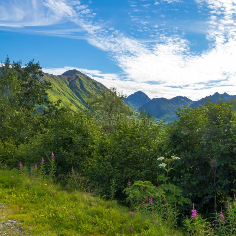 Σύννεφα και ήλιος στο πέρασμα Hatcher, Αλάσκα στοκ εικόνες με δικαίωμα ελεύθερης χρήσης