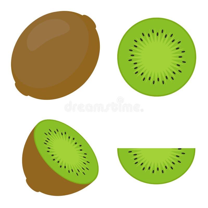 Σύνολο απομονωμένου ρεαλιστικού χρωματισμένου συνόλου, μισός και κύκλος του πράσινου juicy ακτινίδιου στο άσπρο υπόβαθρο Ρεαλιστι ελεύθερη απεικόνιση δικαιώματος