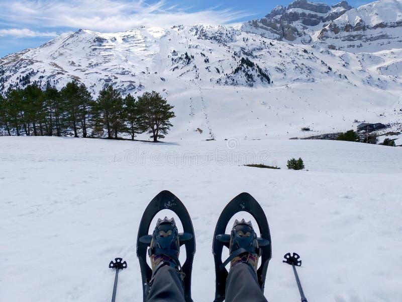 σύνολο ενός ζευγαριού των πλεγμάτων σχήματος ρακέτας ή των ρακετών χιονιού και δύο πόλων σκι στο κρύο άσπρο χιόνι έτοιμο να περπα στοκ φωτογραφία