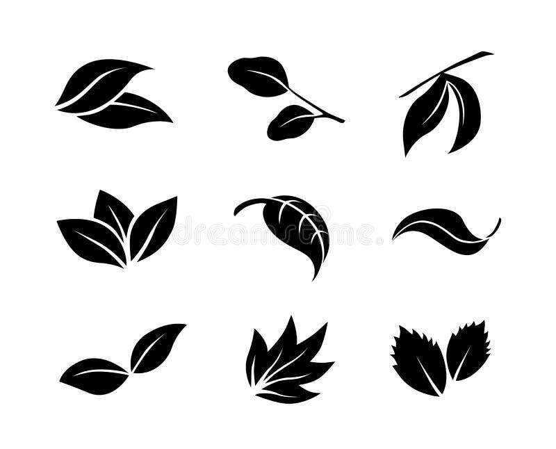 Σύνολο μαύρων διανυσματικών εικονιδίων φύλλων στο άσπρο υπόβαθρο απεικόνιση αποθεμάτων