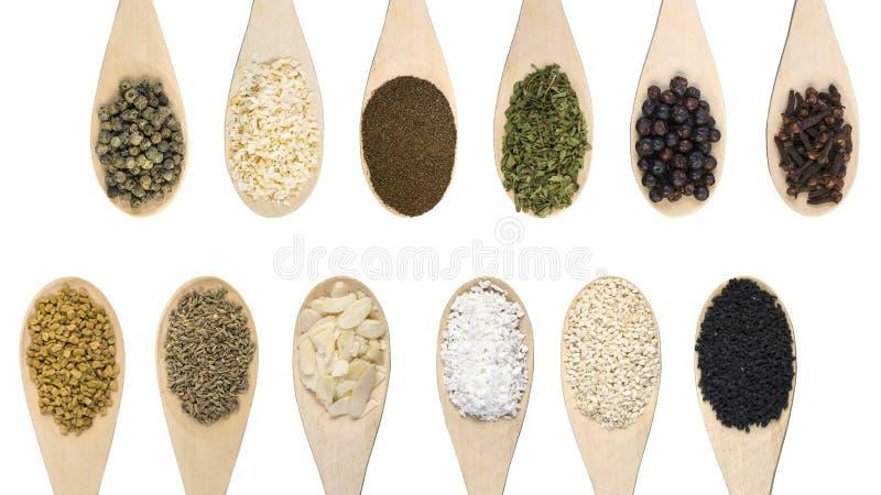 Σύνολο διάφορων καρυκευμάτων και συστατικών τροφίμων που απομονώνονται στο άσπρο υπόβαθρο Υψηλή διάλυση στοκ φωτογραφία