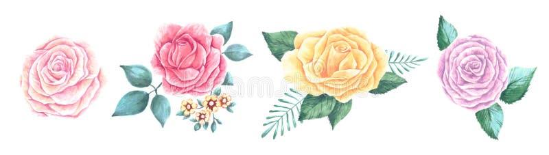 Σύνολο όμορφων λουλουδιών ανθοδεσμών των κόκκινων, ρόδινων και ευγενών ανθίζοντας τριαντάφυλλων ροδάκινων με τα φύλλα και τους οφ απεικόνιση αποθεμάτων