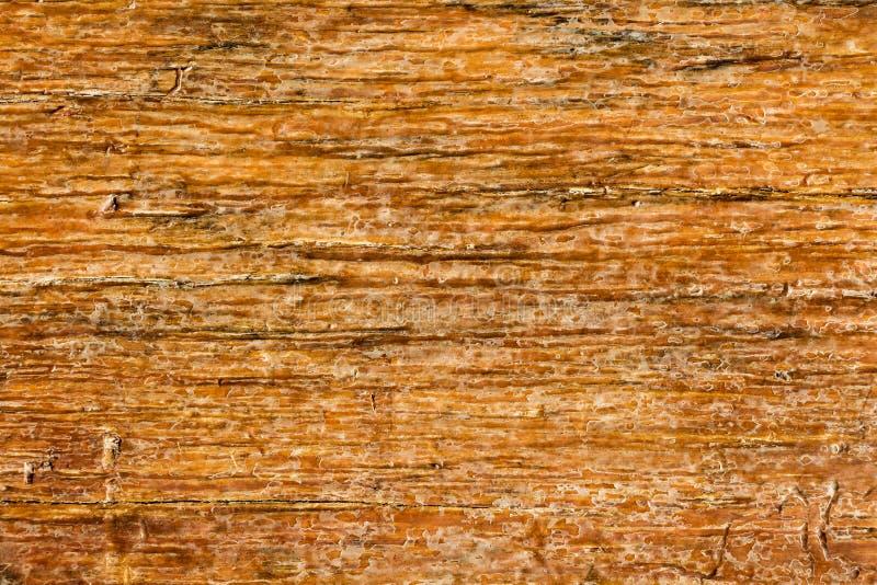 Σύσταση της ξύλινης χρήσης όπως φυσική Εκλεκτής ποιότητας καφετιά ξύλινη σανίδα για τη σύσταση ή το υπόβαθρο στοκ εικόνες