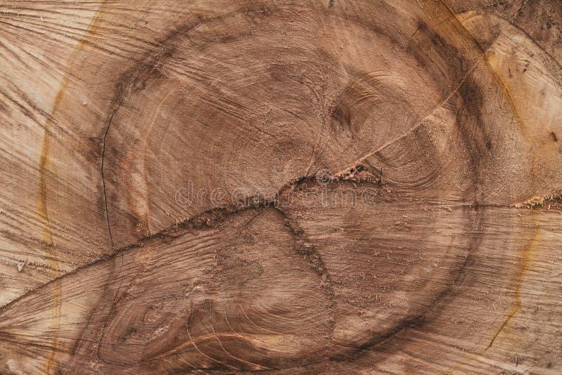 Σύσταση του καφετιού ξύλινου κολοβώματος για το σχέδιο διακοσμήσεων Παλαιό ξύλινο εκλεκτής ποιότητας υπόβαθρο τοίχων Κενό διάστημ στοκ φωτογραφία με δικαίωμα ελεύθερης χρήσης