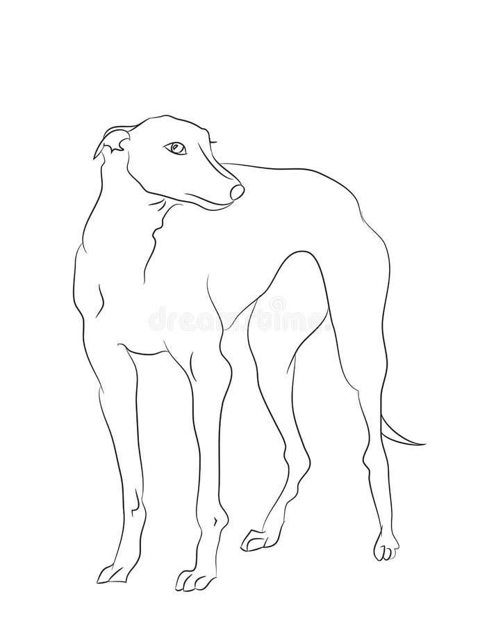 Στάσεις σκυλιών, γραμμές, διάνυσμα ελεύθερη απεικόνιση δικαιώματος