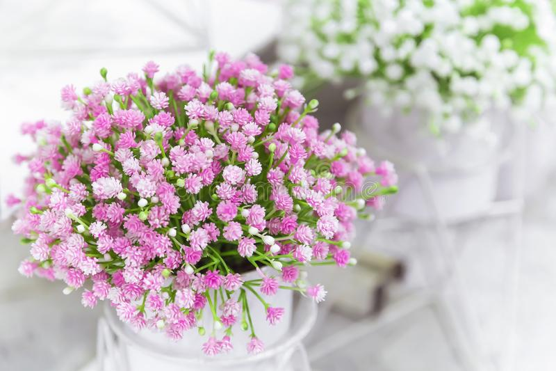 Στοιχεία και λεπτομέρειες του κήπου και του εγχώριων ντεκόρ και του εσωτερικού Τεχνητά μικρά λουλούδια εγκαταστάσεων του ρόδινου  στοκ εικόνα