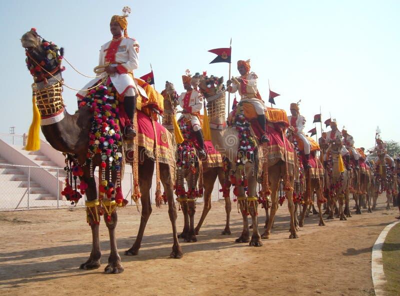 Στρατός & x28 BSF& x29  προσωπικό, φεστιβάλ καμηλών, Bikaner στις διακοσμημένες καμήλες στοκ φωτογραφία με δικαίωμα ελεύθερης χρήσης
