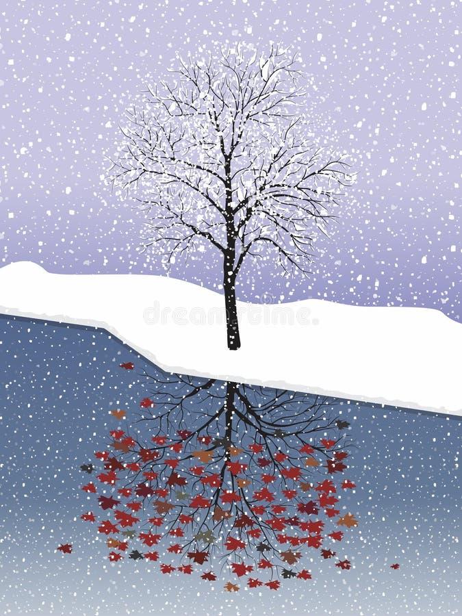 Σφένδαμνος χιονιού διανυσματική απεικόνιση
