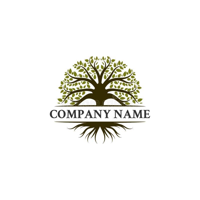 Σχέδια λογότυπων δέντρων, δρύινα δέντρα, ελιές διανυσματική απεικόνιση