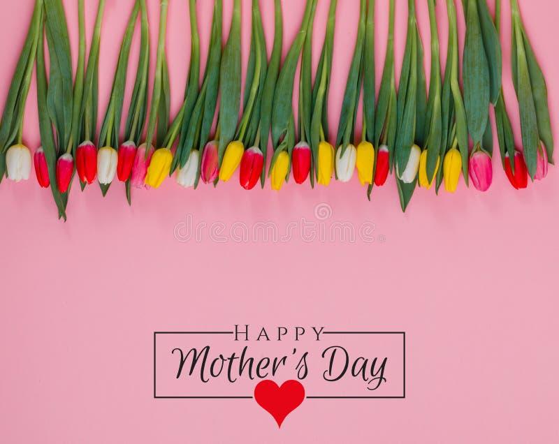 Σχέδιο ημέρας των διεθνών γυναικών στις 8 Μαρτίου Λουλούδια τουλιπών στο υπόβαθρο στοκ εικόνες