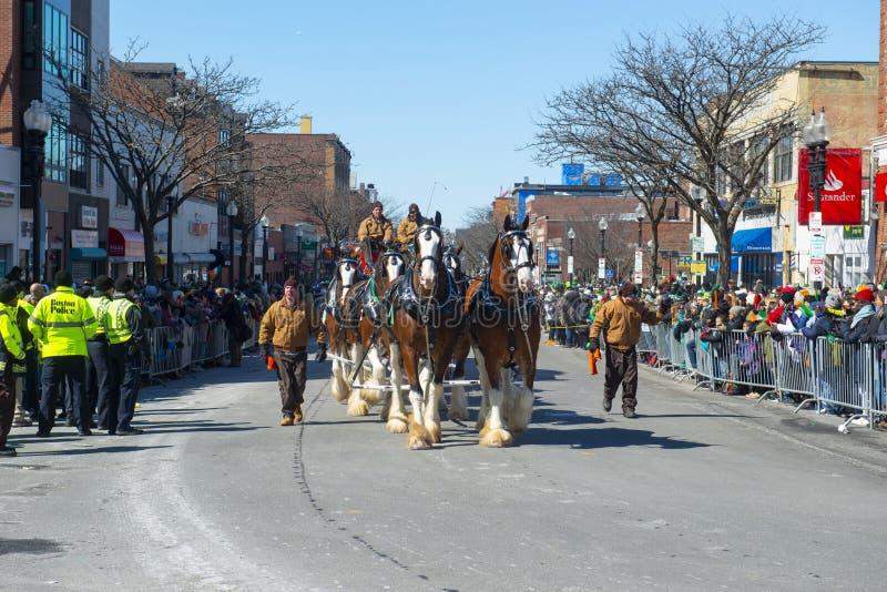 Συρμένη άλογο μεταφορά στην παρέλαση Βοστώνη, ΗΠΑ ημέρας Αγίου Πάτρικ στοκ φωτογραφία