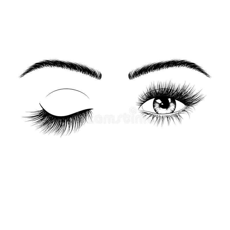 Συρμένη χέρι θηλυκή σκιαγραφία ματιών Κλείστε το μάτι ένα μάτι Μάτια με τα eyelashes και τα φρύδια Απεικόνιση που απομονώνεται δι διανυσματική απεικόνιση