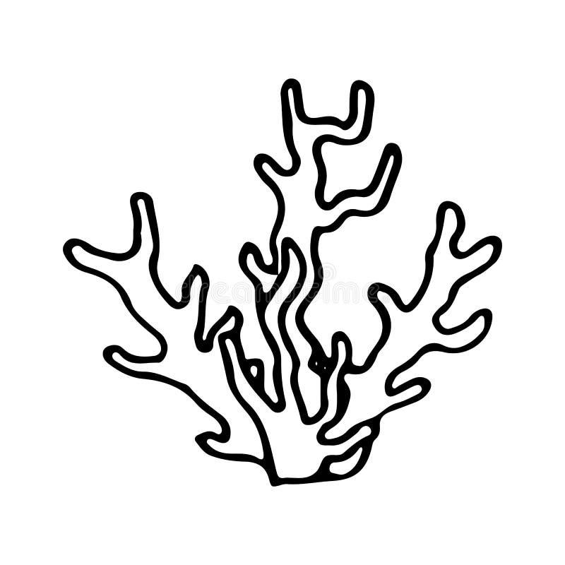 Συρμένο χέρι κοράλλι doodle Εικονίδιο ύφους σκίτσων Θαλάσσια υποβρύχια ζιζάνια και ζώα εγκαταστάσεων η ανασκόπηση απομόνωσε το λε ελεύθερη απεικόνιση δικαιώματος