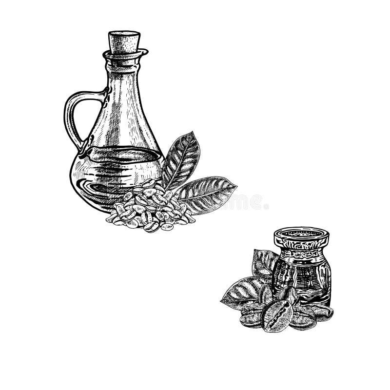 Συρμένο χέρι σκίτσο του πετρελαίου καφέ Εκχύλισμα των εγκαταστάσεων επίσης corel σύρετε το διάνυσμα απεικόνισης απεικόνιση αποθεμάτων