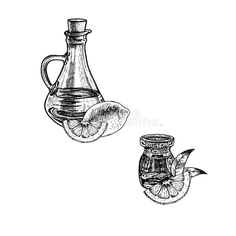 Συρμένο χέρι σκίτσο του πετρελαίου φλούδας λεμονιών Εκχύλισμα των εγκαταστάσεων επίσης corel σύρετε το διάνυσμα απεικόνισης ελεύθερη απεικόνιση δικαιώματος