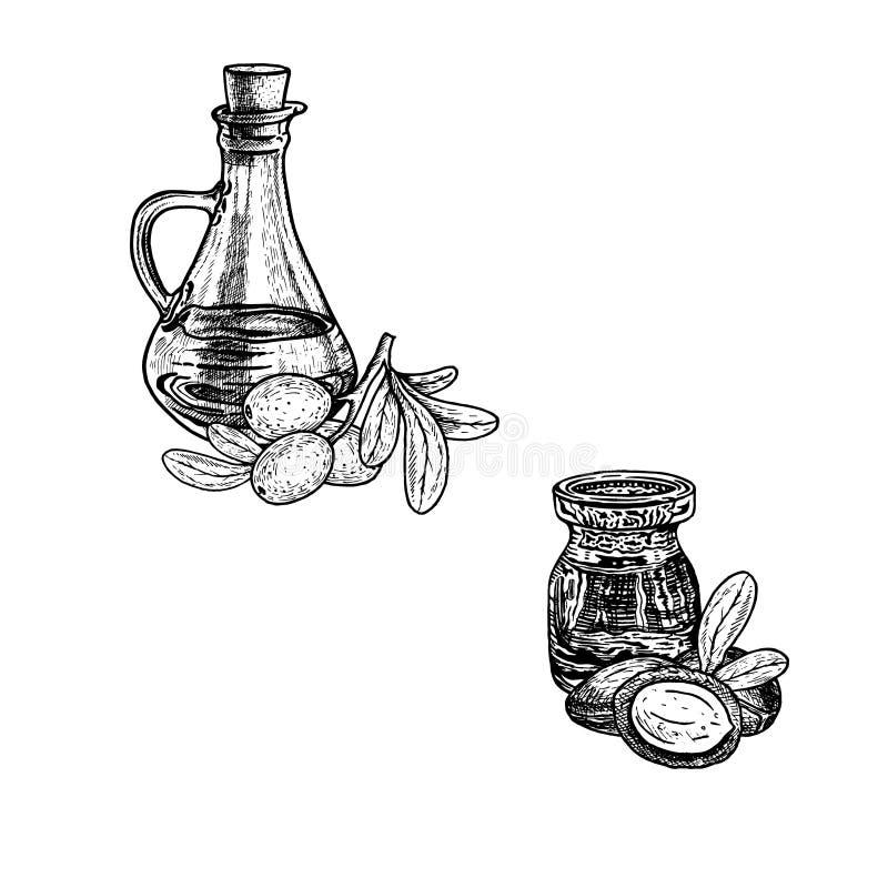 Συρμένο χέρι σκίτσο argan του πετρελαίου Εκχύλισμα των εγκαταστάσεων επίσης corel σύρετε το διάνυσμα απεικόνισης απεικόνιση αποθεμάτων