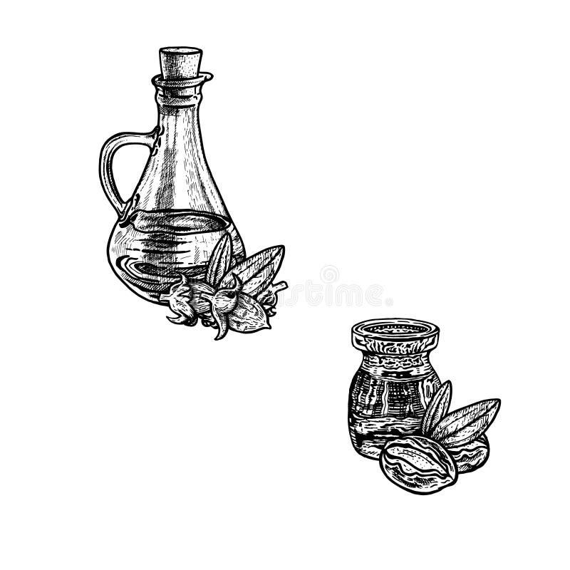 Συρμένο χέρι σκίτσο jojoba του πετρελαίου Εκχύλισμα των εγκαταστάσεων επίσης corel σύρετε το διάνυσμα απεικόνισης ελεύθερη απεικόνιση δικαιώματος