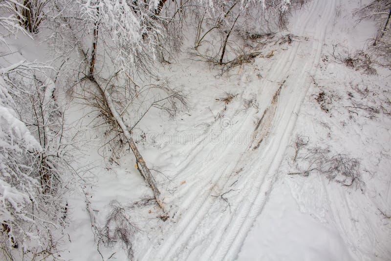 Σπασμένο δέντρο μετά από βαριές χιονοπτώσεις το χειμώνα, τοπ άποψη στοκ εικόνες με δικαίωμα ελεύθερης χρήσης