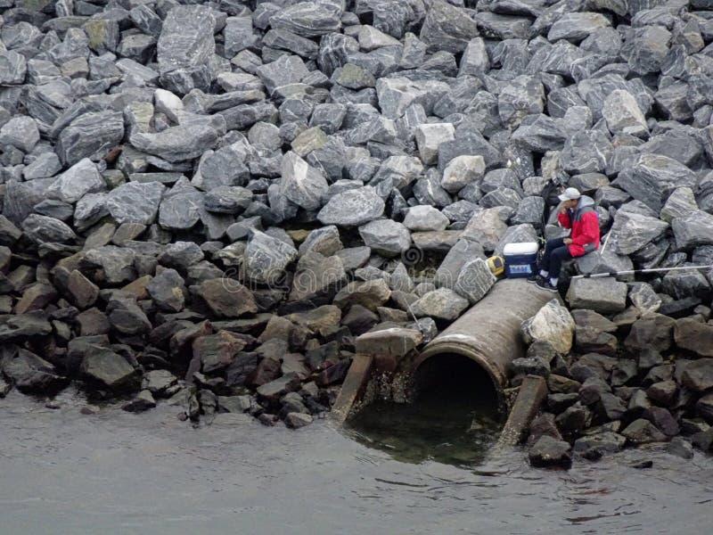 Ψάρια ατόμων στη δύσκολη τράπεζα στοκ εικόνα
