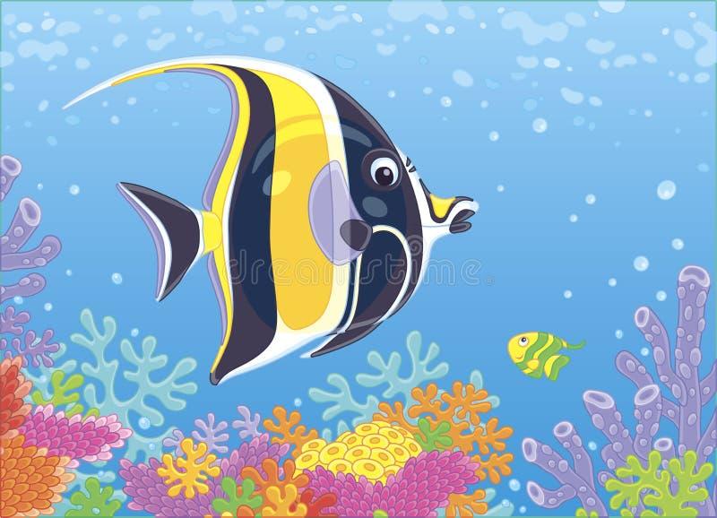 Ψάρια πεταλούδων πέρα από τα ζωηρόχρωμα κοράλλια ελεύθερη απεικόνιση δικαιώματος