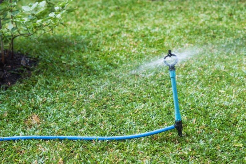Ψεκάστε το νερό ψεκασμού στον τομέα χορτοταπήτων στοκ φωτογραφία με δικαίωμα ελεύθερης χρήσης