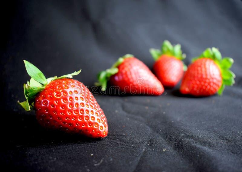 Τέσσερις φράουλες στο μαύρο ύφασμα στοκ εικόνες