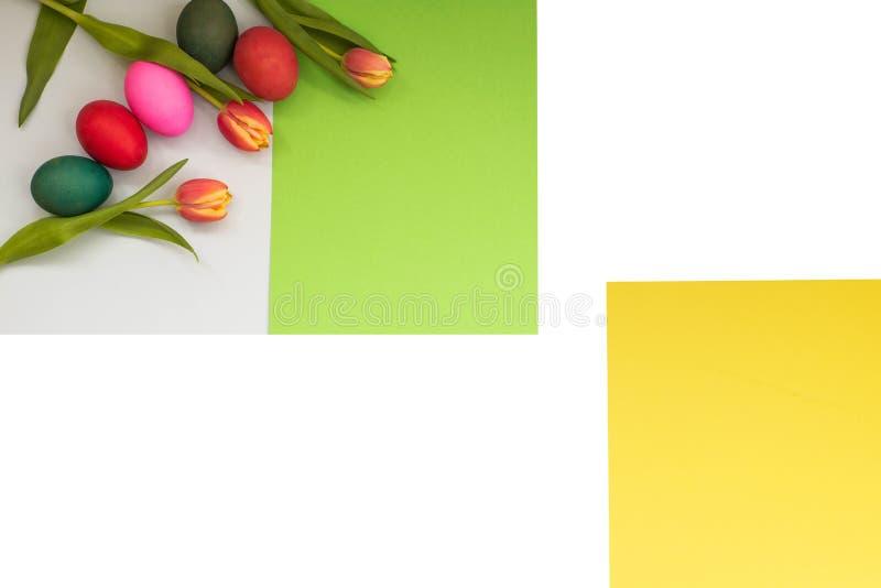 Τα χρωματισμένα αυγά Πάσχας αναπηδούν την κινηματογράφηση σε πρώτο πλάνο τουλιπών σε ένα απομονωμένο υπόβαθρο με το διάστημα για  στοκ φωτογραφίες