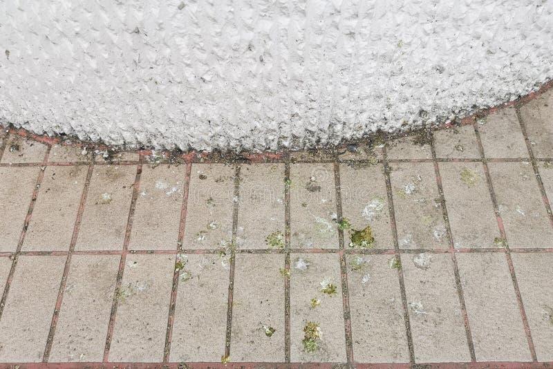 Τα περιττώματα πουλιών που εκκρίνει το ρύπο στο πάτωμα, δημιουργούν το πρόβλημα και την υγιεινή στοκ φωτογραφίες