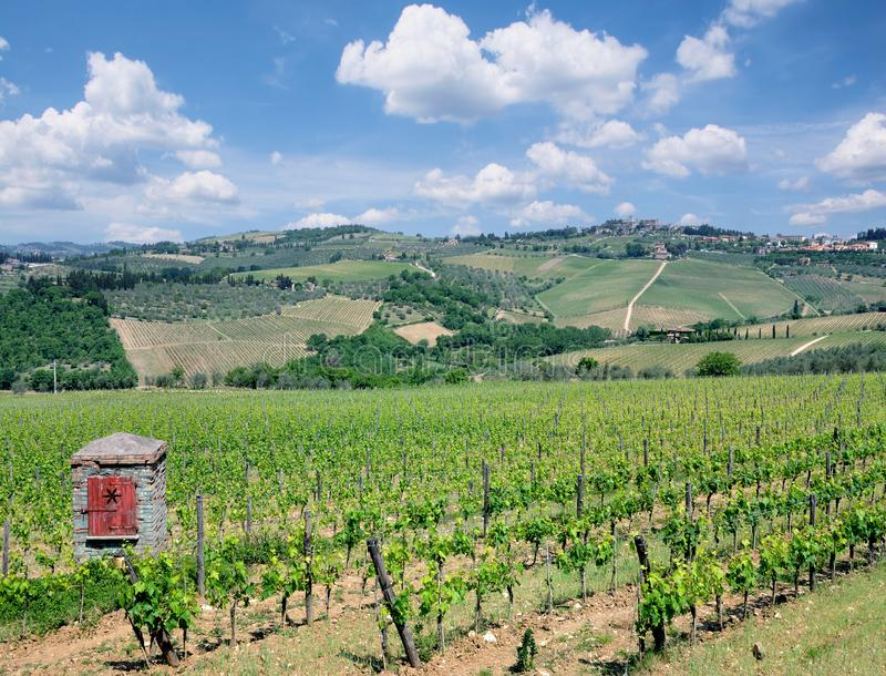 Τοπίο αμπελώνων, περιοχή Chianti, της Τοσκάνης, Ιταλία στοκ εικόνα