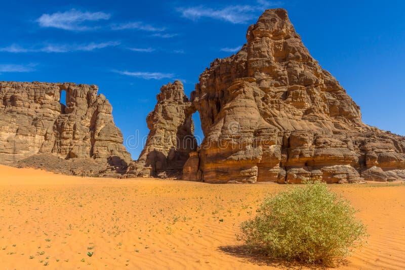 Τοπίο Sahara's Tassili N'Ajjer, νότια Αλγερία στοκ φωτογραφίες