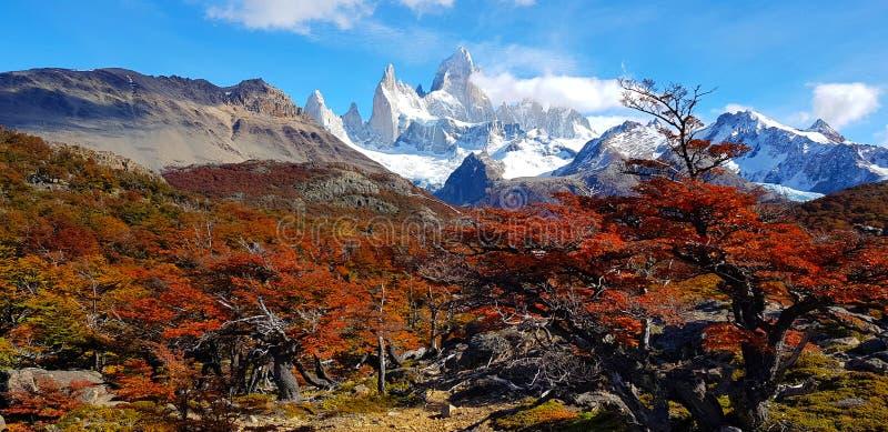 Τοποθετήστε τη Fitz Roy με τα χρώματα φθινοπώρου, Αργεντινή στοκ εικόνα